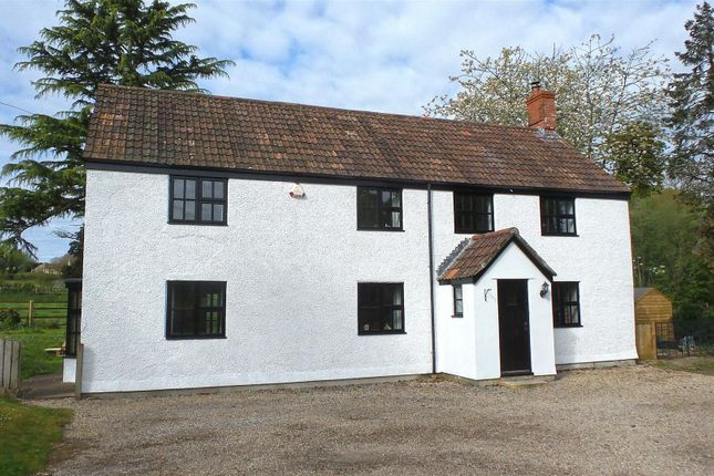 Thumbnail Property to rent in Touches Lane, Chard