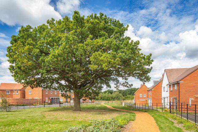 "Detached house for sale in ""Irving"" at Appleton Drive, Basingstoke"