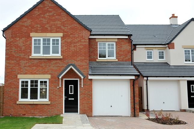 "Thumbnail Detached house for sale in ""Roseberry"" at Windsor Way, Carlisle"