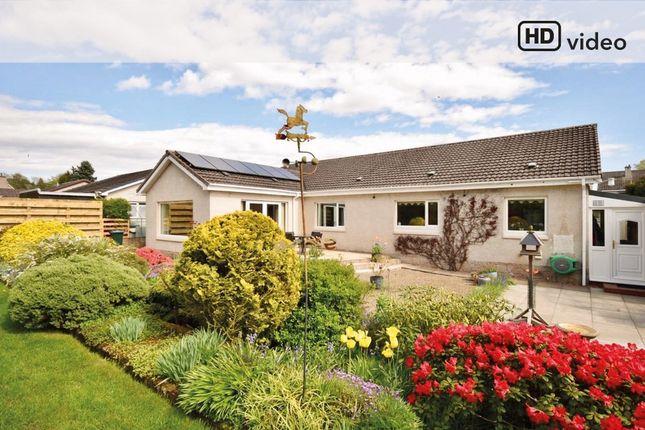 Thumbnail Detached bungalow for sale in Grampian View, Coupar Angus, Blairgowrie
