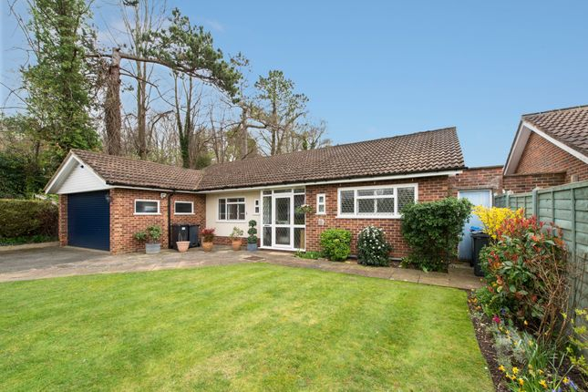 Thumbnail Detached bungalow for sale in Hook Hill, Sanderstead, South Croydon