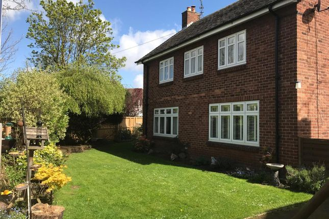 Thumbnail Property to rent in Selkirk Road, Chester