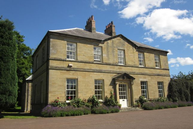 Thumbnail Detached house for sale in Togston Hall North Togston Morpeth, Northumberland