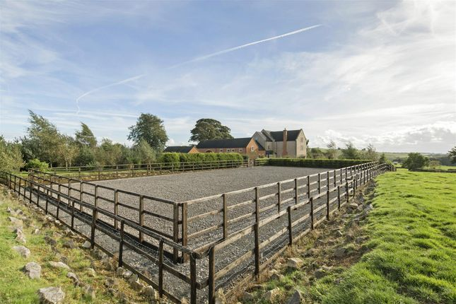 Bryn Hall Farm Fpz175245 (117)
