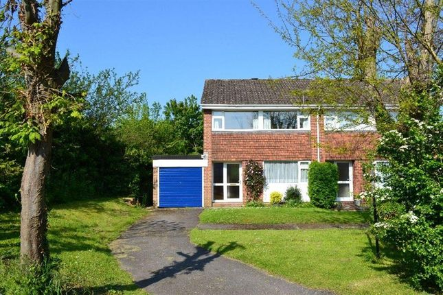 3 bedroom property for sale in Amberley Close, Newbury
