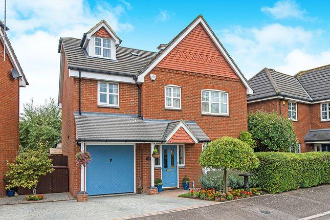 Thumbnail Detached house for sale in Hilton Close, Faversham