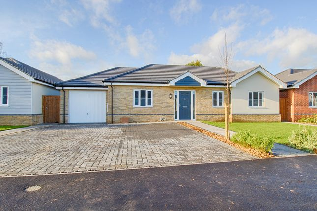 Thumbnail Detached bungalow for sale in Clacton Road, Elmstead, Colchester