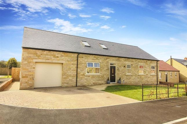 Thumbnail Detached house for sale in Craighton Place, Embleton, Northumberland