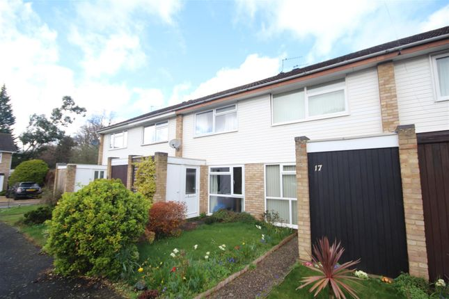 Thumbnail Terraced house to rent in Falstone, Woking