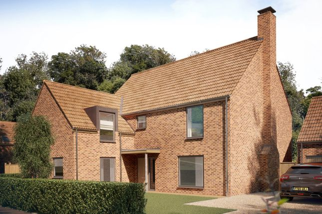 Thumbnail Detached house for sale in Long Lane, Stoke Holy Cross, Norwich, Norfolk