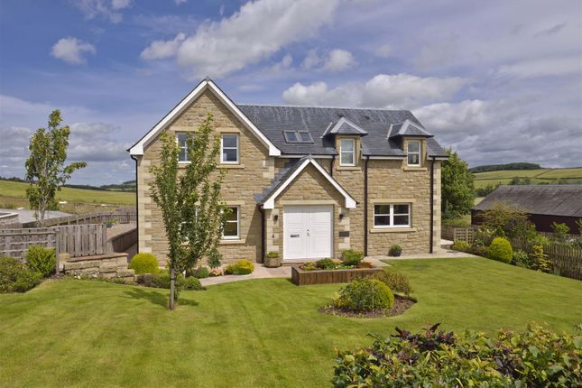 Thumbnail Detached house for sale in Jedburgh