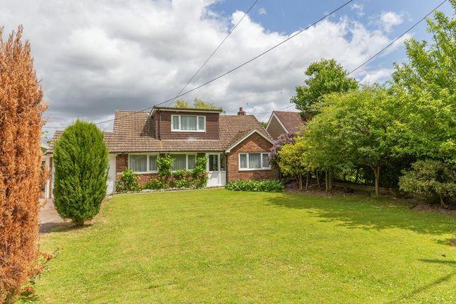 Thumbnail Bungalow for sale in Parrock Lane, Upper Hartfield, Hartfield