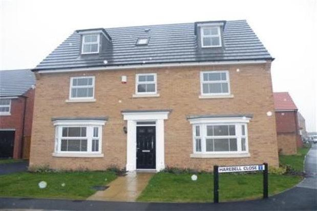 Thumbnail Detached house to rent in Harebell Close, Nottingham