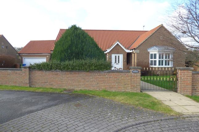 Thumbnail Detached bungalow for sale in Church Green, Beverley