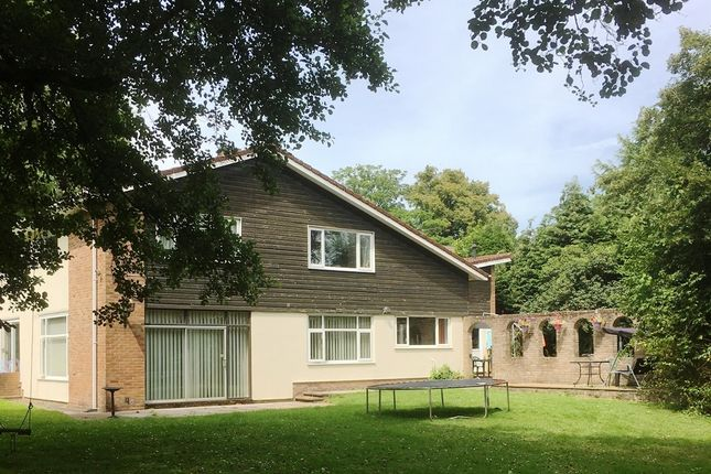 Thumbnail Detached house for sale in Five Locks Road, Pontnewydd, Cwmbran