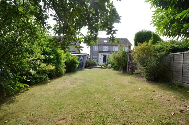 Thumbnail Semi-detached house for sale in Dawson Close, Saffron Walden, Essex