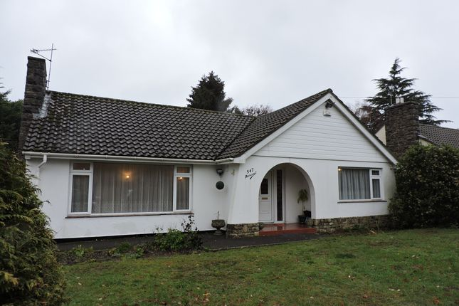Thumbnail Detached bungalow to rent in Wimborne Road East, Ferndown