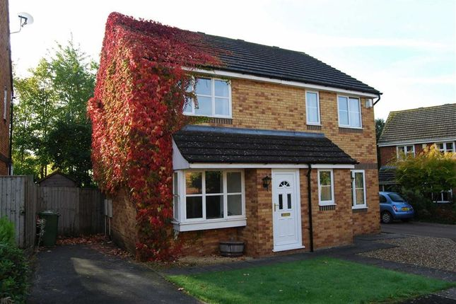 Thumbnail Semi-detached house to rent in Target Close, Ledbury, Herefordshire