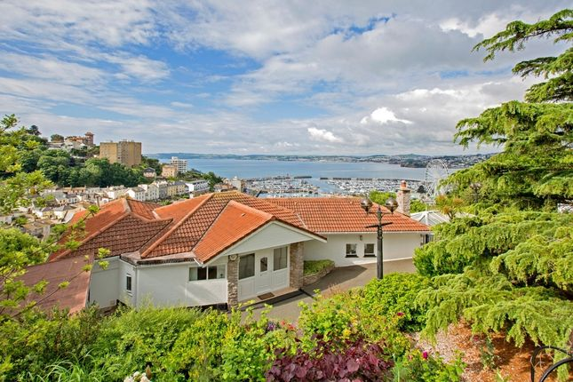 Thumbnail Detached house for sale in Braddons Hill Road East, Torquay