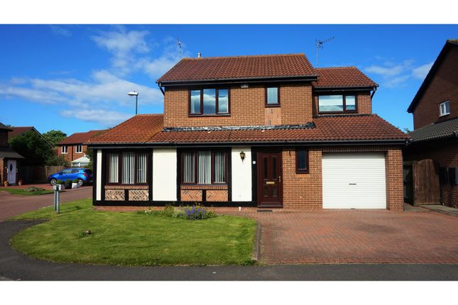 Thumbnail Detached house for sale in Beaconside, South Shields