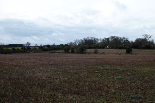 Property For Sale Bircham Norfolk