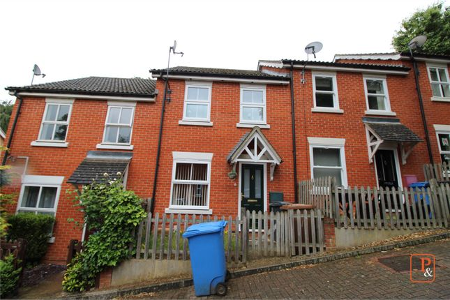 Thumbnail Detached house to rent in Mitre Way, Ipswich, Suffolk