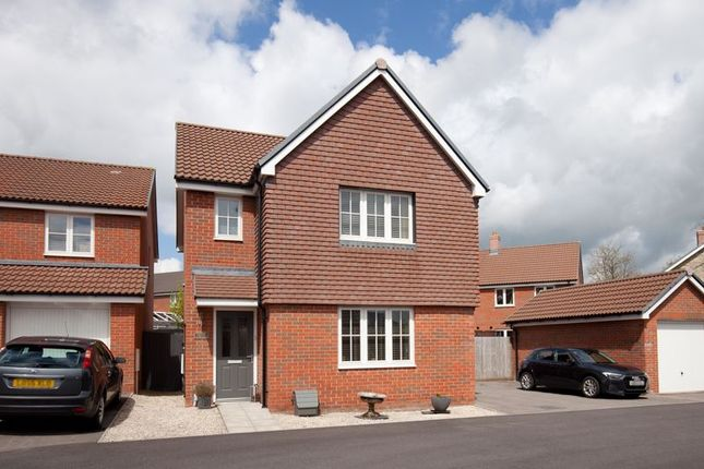 Thumbnail Detached house for sale in Hoeller Close, Shaftesbury
