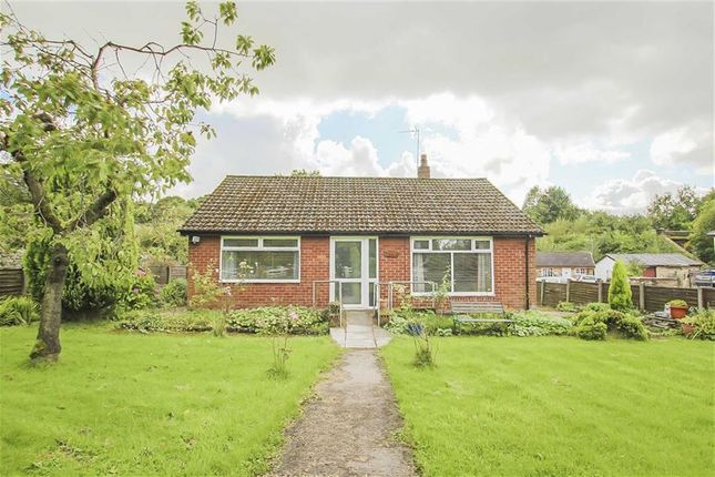 Thumbnail Detached bungalow for sale in Crosse Hall Lane, Chorley, Lancashire