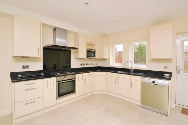 Thumbnail Terraced house to rent in Coverdale Road, Friern Barnet
