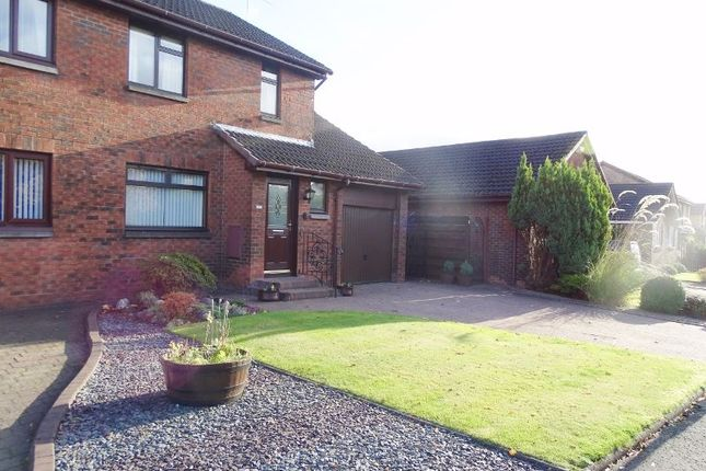 Thumbnail Semi-detached house for sale in The Cedars, Tullibody, Alloa