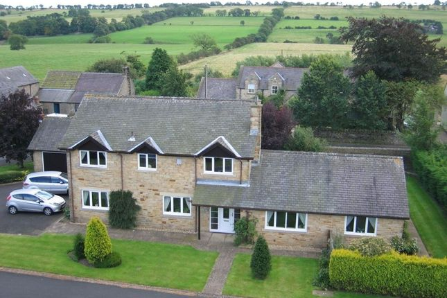 Thumbnail Detached house for sale in Heatheryhill Lowgate, Hexham