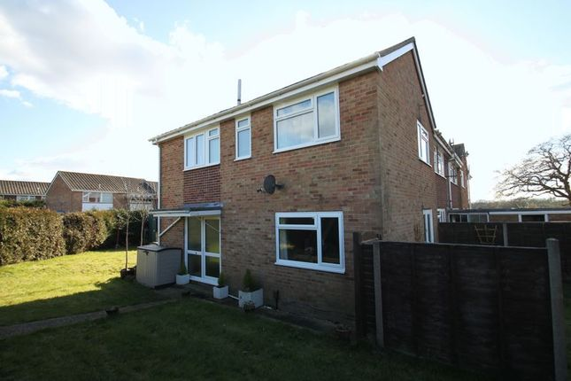 Thumbnail Semi-detached house to rent in Wroxall Close, Cowes