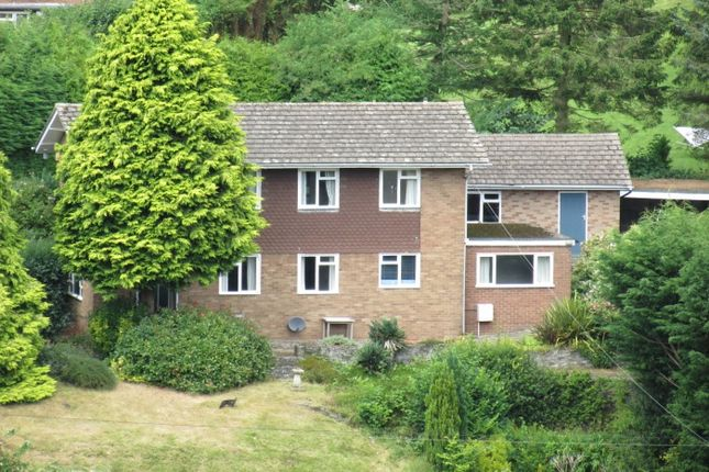Thumbnail Detached house for sale in Mill Road, Knighton