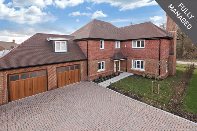 Thumbnail Detached house to rent in Yarrow Hill, Warfield, Bracknell, Berkshire