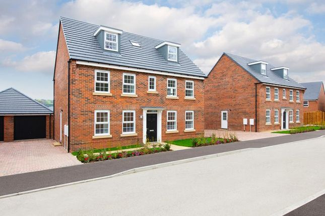 "Detached house for sale in ""Buckingham"" at Craneshaugh Close, Hexham"