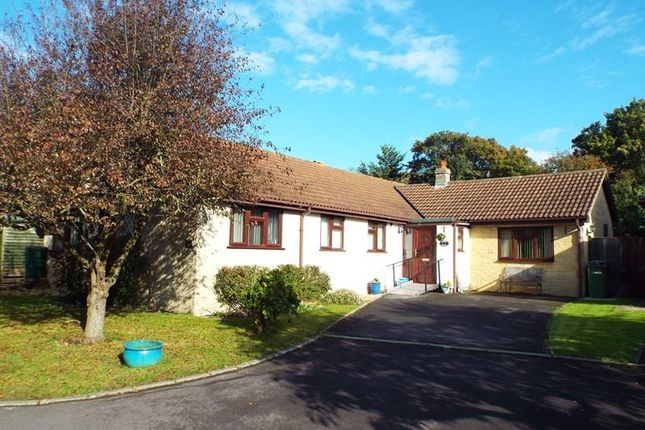 Thumbnail Property for sale in Priddy Close, Frome