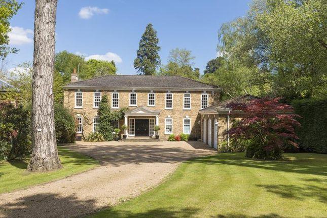 Thumbnail Property to rent in Pond Close, Burwood Park, Walton On Thames, Surrey