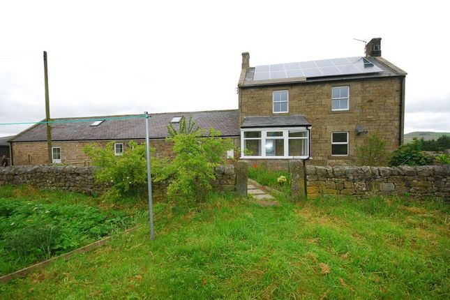 Thumbnail Detached house to rent in West Woodburn, Hexham