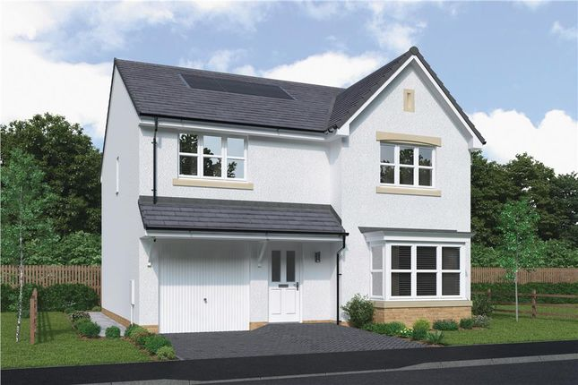 """Thumbnail Detached house for sale in """"Hartwood"""" at Bartonshill Way, Uddingston, Glasgow"""