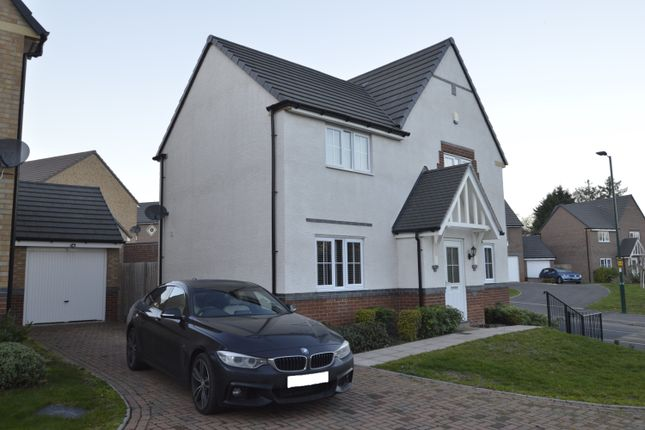 Thumbnail Detached house to rent in Greenfinch Drive, Shrewsbury