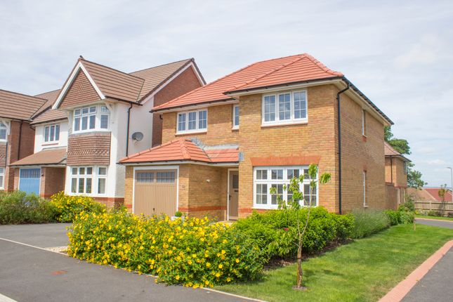 Thumbnail Detached house for sale in Twickenham Street, Beacon Park, Plymouth