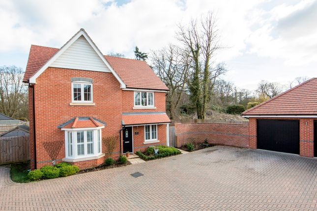 Thumbnail Detached house for sale in Bramley Drive, Hartley Wintney, Hook