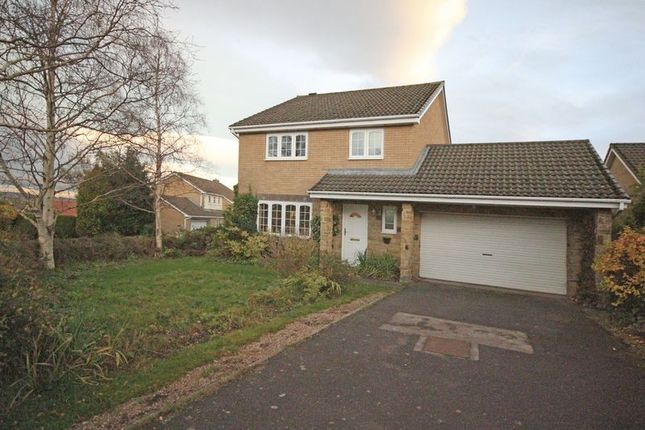 Thumbnail Detached house for sale in Milburn Close, Hexham