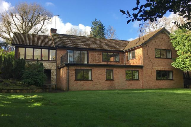 Thumbnail Property for sale in Hermitage Road, Cold Ash, Thatcham