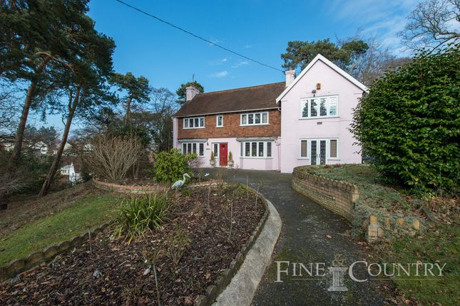 Thumbnail Detached house for sale in Parsons Hill, Colchester