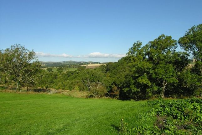 Thumbnail Land for sale in Tower Side, Whittingham, Alnwick