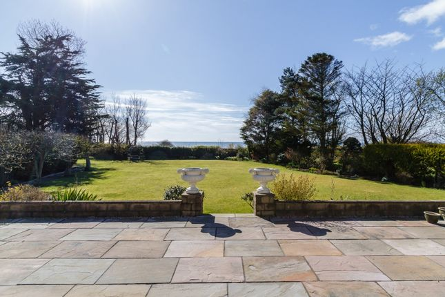 Thumbnail Detached house for sale in Warslap Avenue, Arbroath, Angus