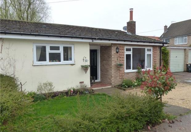 Thumbnail Detached house to rent in Radwell Road, Milton Ernest, Bedford