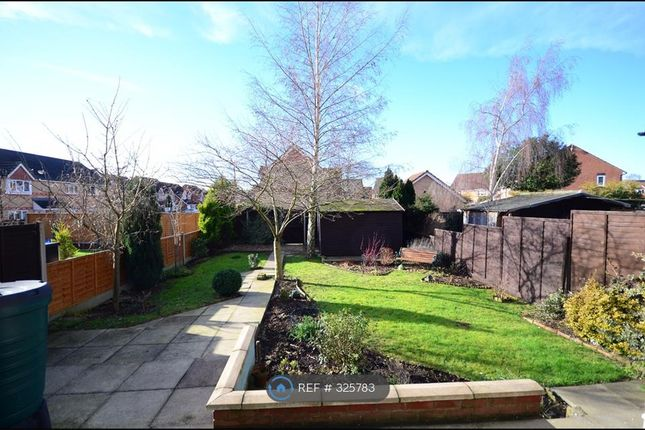 Thumbnail Semi-detached house to rent in Boughton Road, Rugby