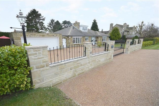 Thumbnail Detached bungalow for sale in Otley Road, Harrogate, North Yorkshire